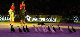 Anne Krüger Degener begeisterte schon 2015 in Show-Abend mit Ihren Enten